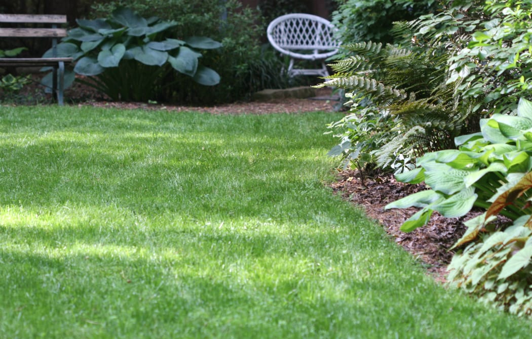 Lawn Care - From Clemson University Home & Garden Information Center