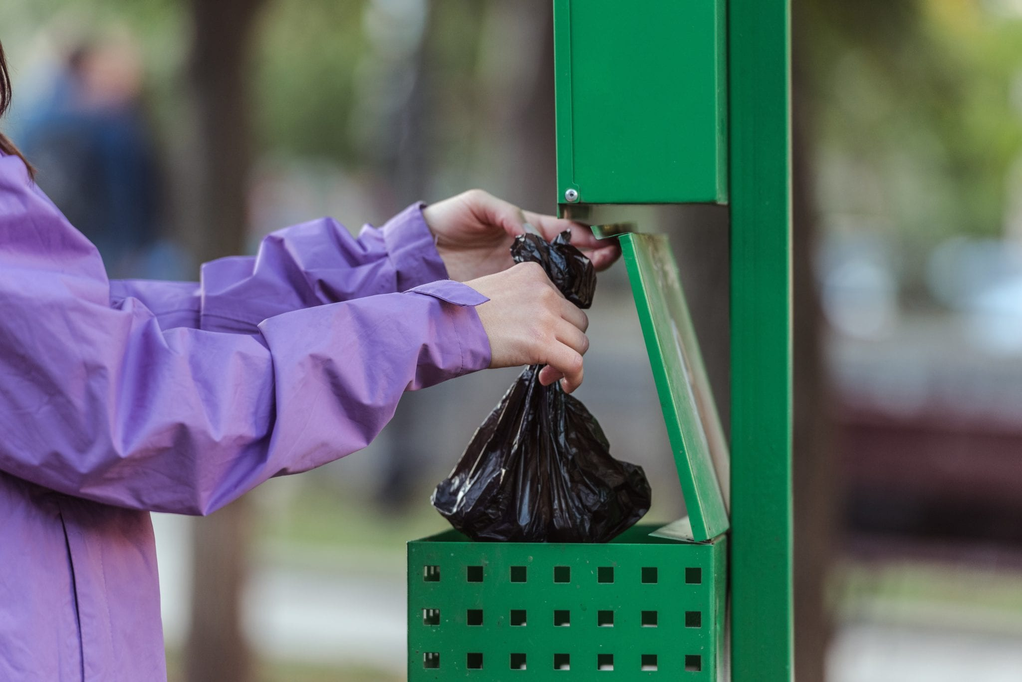 cropped shot of woman putting bag in trash can in park, cleaning after pet concept